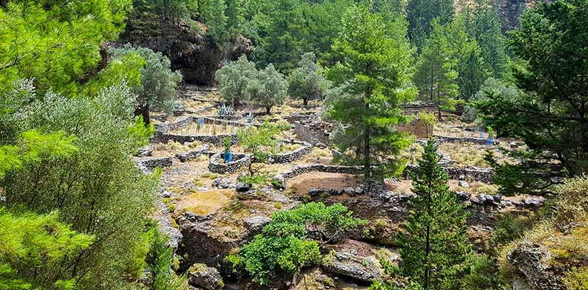 Restos del pueblo de Samaria